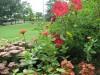 Jardin Botanique du Queens